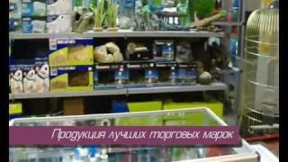 видео Террариумы в Одессе – товары для террариумов