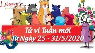 Xem tử vi hàng ngày - Tử vi tuần mới từ ngày 25 tháng 5 đến ngày 31 tháng 5 năm 2020 của 12 con giáp