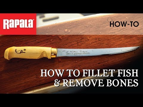 How To Fillet Fish & Remove Bones | Rapala Fishing Tips