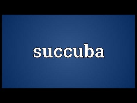 Header of succuba