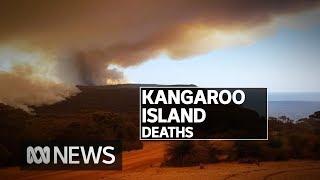 Kangaroo Island bushfires claim two lives as CFS battles to control blazes | ABC News