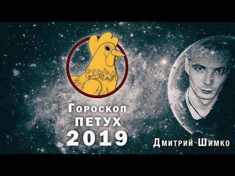 Гороскоп Петух -2019. Астротиполог, Нумеролог - Дмитрий Шимко