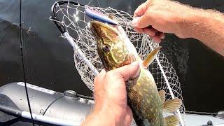 Твичинг и Тейл Спиннер сделают любую рыбалку Щука на первом забросе плохая примета
