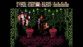 [TAS] NES Ninja Gaiden II: The Dark Sword of Chaos by xipo & Samsara in 09:12.17