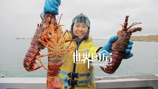 第27集:新西兰出海捕龙虾,煮成一锅当饭吃 Crayfish Catch and cook in Kaikoura NZ