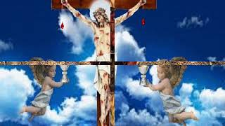 Salve ó Cruz Libertadora