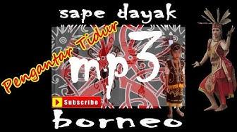 SAPE DAYAK MP3 INSTRUMENT SAPE