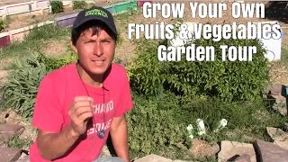 Grow Your Own Fruits and Vegetables Garden Tour and Review
