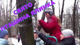 """Свято """"Пташина Ялинка"""""""