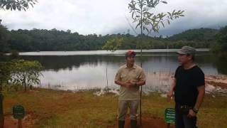 Konservasi Hutan Ditengah Perkebunan Kelapa Sawit