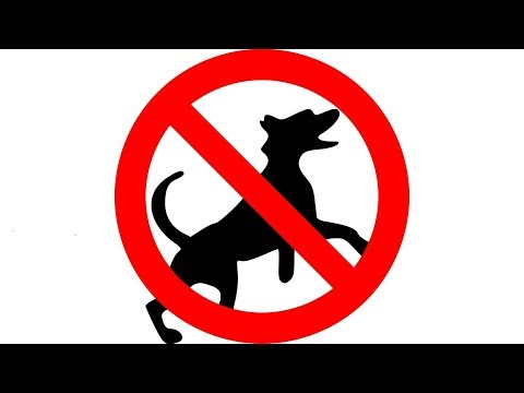 ▶️ HOW TO STOP A DOG BARKING. ULTRASONIC BARK CONTROL. KEEP A DOG OUT OF GARDEN. 12 HOURS. 📢