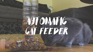 Cat Feeder - DIY Automatic Food Dispenser  😻