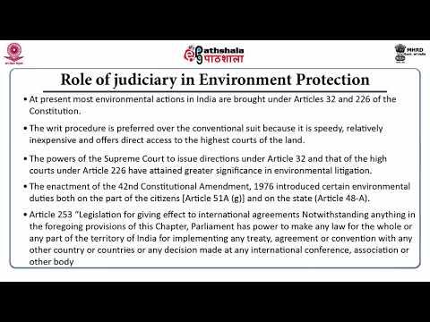 Environment And Public Interest Litigation