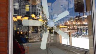 Ceiling Fan/Lighting Showroom Sighting (FULL)