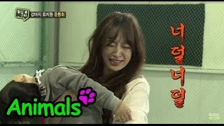 [Animals] 애니멀즈 - EXID Hani, forced to show