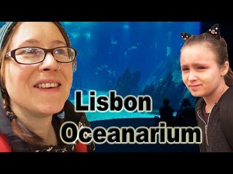 Lisbon Oceanarium, Parque das Nações, Lisbon, Portugal with Imo and Izzy.🇵🇹