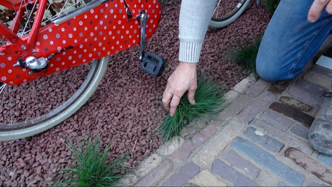 Grind in de tuin leggen fiets parkeren in kleine voortuin tuinieren met jurgen youtube - Tuin grind decoratief ...