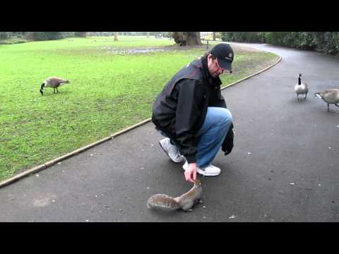 Stuart Moore at Kelsey Park ( 1 )