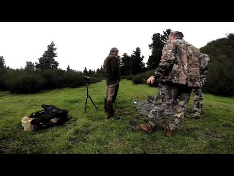 Four Seasons Safaris - Hunting New Zealand