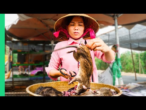 Asia's SHOCKING Live Animal Market!!! Extreme Food Tour In The Mekong Delta!