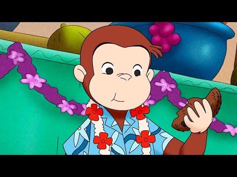 Curious George 🐵Monkey Mystery Gift 🐵 Cartoons For Kids   WildBrain Cartoons