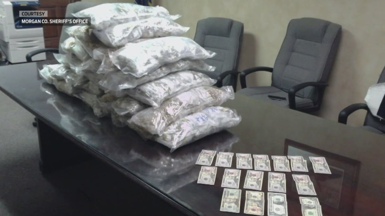 Major drug bust in Morgan County