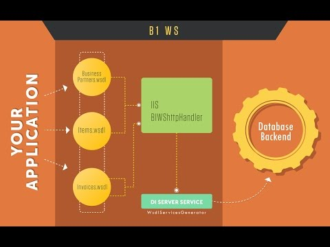 WEBINAR : Connect Third Party Systems with SAP B1 DI API, DI Server, B1WS