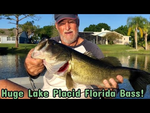 Whopper Plopper Big Bass Hits In Lake Placid Florida, Crazy Top Water Hits & Explosions On Frogs!!!!