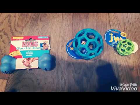 dog-toys-for-small-breeds:-jw-hol-ee-roller-tug-&-treat-ball!-給小狗玩的狗玩具!