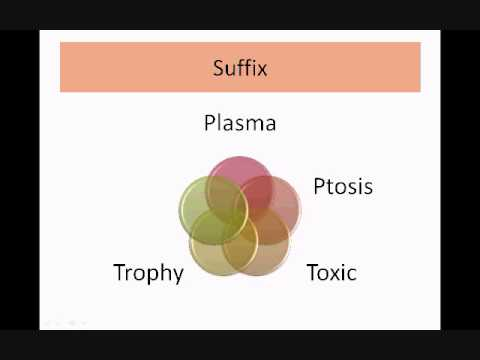 Medical Terminology Part 1_Intro to Root, Prefix, Suffix