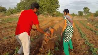 Indian agriculture cultivation method s