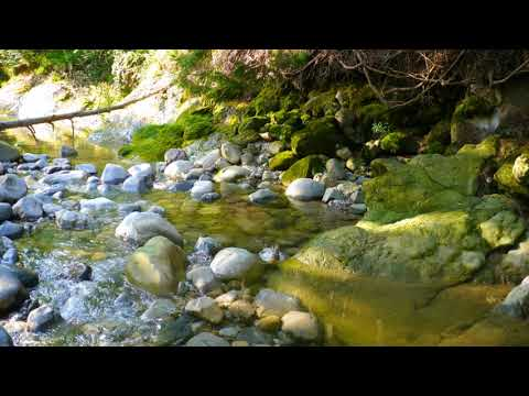 Relaxing Music for Stress Relief , Sleep Music , Ambient Study Music , Therapy
