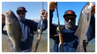LARGE MOUTH AND STRIPED BASS FISHING SAN LUIS RESERVOIR ZOOM SUPER FLOOK