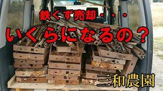 こんにちは、三和農園の河村です。 「三和農園」のホームページ https://yaizu-miwanouen.com/ YouTubeをご視聴頂きまして有難うございます。 私は、静岡県焼津市の、 ...