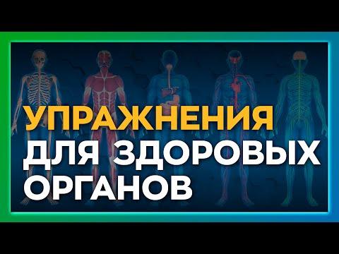 """Прямой эфир от 10.11 на тему """"Лечение внутренних органов"""""""