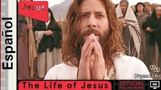 La vida de Jesús   Español   Life of Jesus (Gospel of John) Official Spanish Full HD Movie (HD)