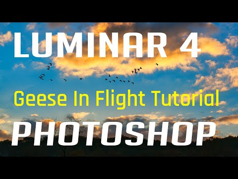 Luminar 4 Geese In Flight Full Edit Photoshop Tutorial thumbnail