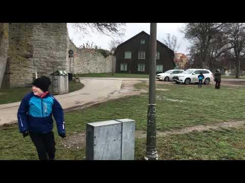 Stormen Alfrida på Gotland 20190102 Mp3