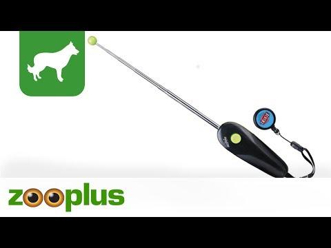 Trixie Target Stick für Hunde, Katzen und Kleintiere bei zooplus.de