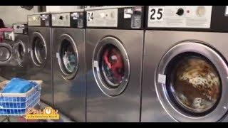 Чому в Нью-Йорку мало людей має власні пральні машини?