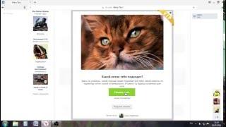 мега тест в вк какой кот тебе подходит
