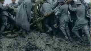 APOCALYPSE La 1ère Guerre Mondiale : L'enfer de Verdun