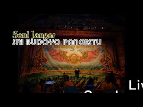 Seni Janger Sri Budoyo Pangestu Live Sumbersari
