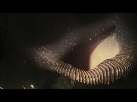 Hathor - Boulevard (Spirit Remix)