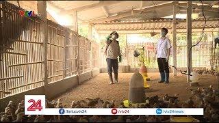 Không còn cán bộ khuyến nông và thú y, lo lắng nhất chính là người dân | VTV24