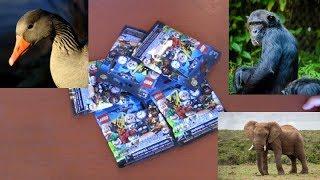 LEGO Batman Movie Minifigure Series 2 Blind Bag Opening 3