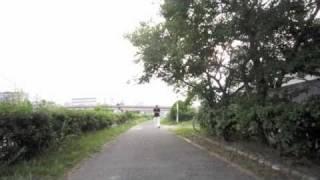 散歩も風景 2010.09.21 KC & The Band- That's the way i like it http:...