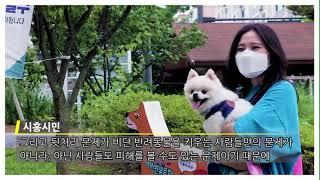 [시흥시] 반려동물배변봉투함 홍보영상/pet Toile…