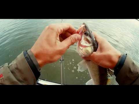 Простая рыбалка. Ловля судака. Водохранилище Селец.