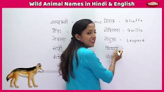 Animal Names in Hindi and English | Learn Animals For Children |  Learn English Through Hindi